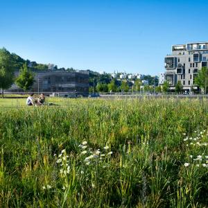 Confluences, jardins aquatiques - © Laurence Danière - Métropole de Lyon