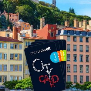 Vieux-Lyon © Shutterstock_114141892©-Martin-M303